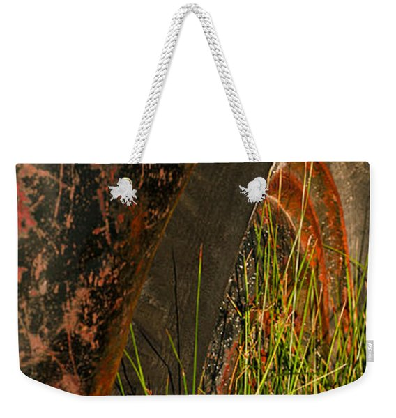 Weekender Tote Bag featuring the photograph Bodie 13 by Catherine Sobredo
