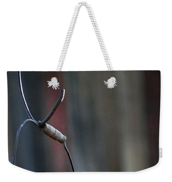 Weekender Tote Bag featuring the photograph Bodie 42 by Catherine Sobredo