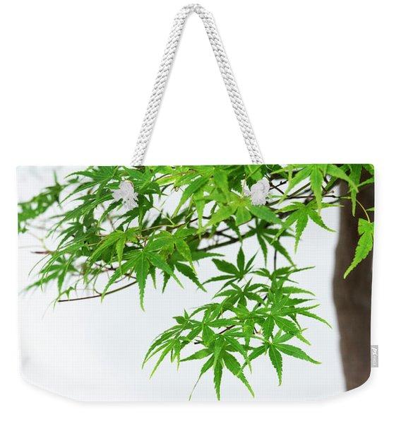 Bonsai Acer Tree Weekender Tote Bag