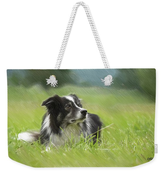 Border Collie - Dwp2189332 Weekender Tote Bag
