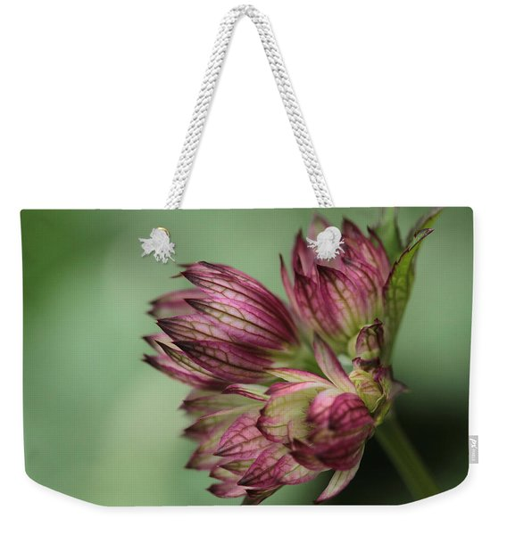 Botanica .. New Beginnings  Weekender Tote Bag