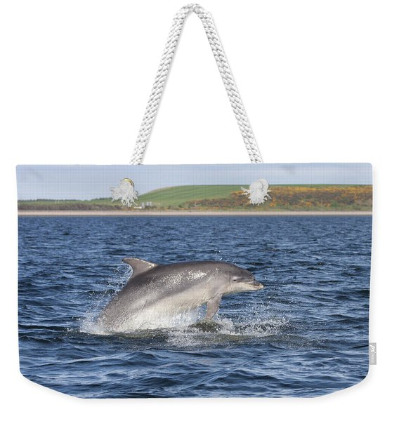 Bottlenose Dolphin - Scotland  #32 Weekender Tote Bag