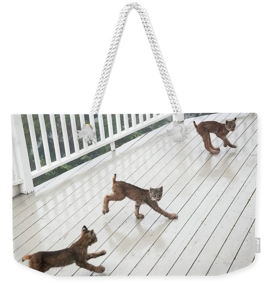 Weekender Tote Bag featuring the photograph Bouncing Is Best by Tim Newton