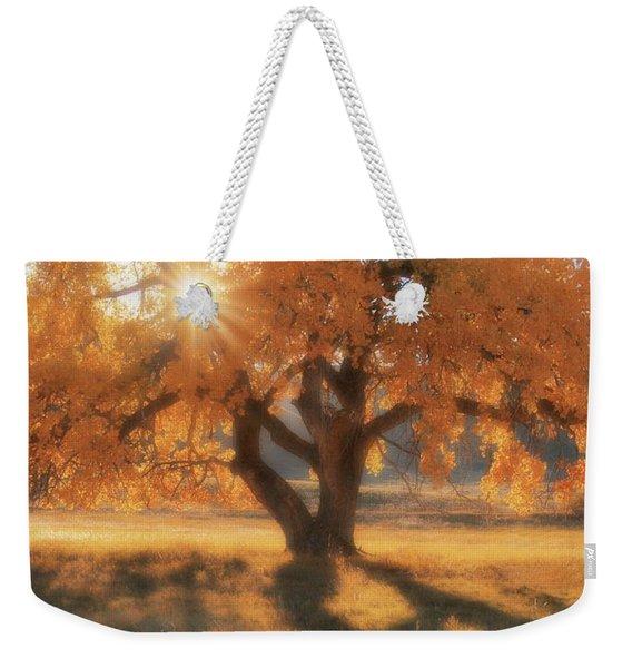 Boxelder's Autumn Tree Weekender Tote Bag