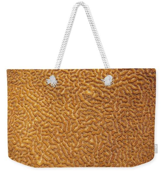 Brain Coral 47 Weekender Tote Bag