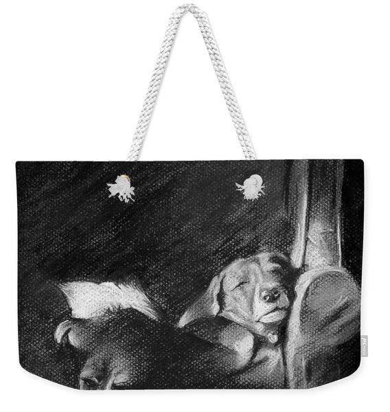 Brandy And Schnapps Weekender Tote Bag
