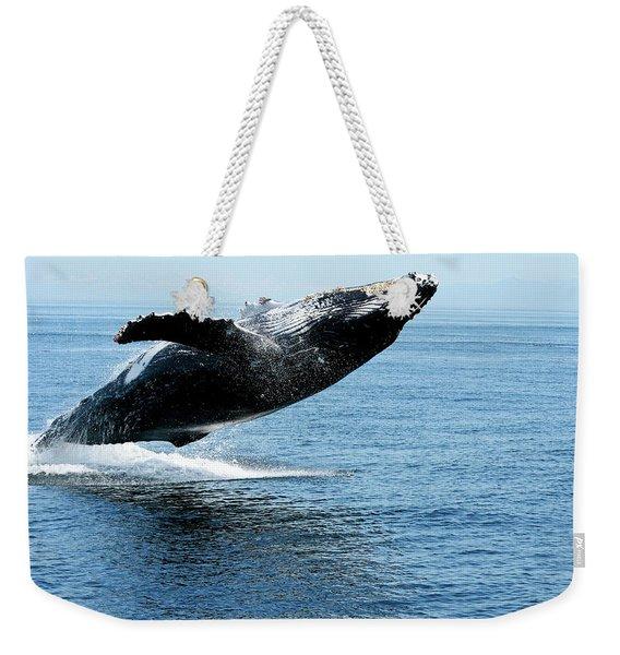 Breaching Humpback Whales Happy-2 Weekender Tote Bag