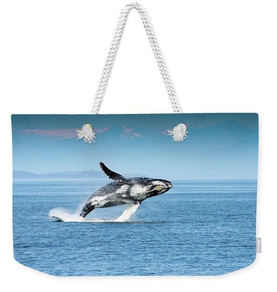 Breaching Humpback Whales Happy-4 Weekender Tote Bag
