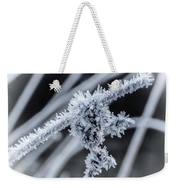 Weekender Tote Bag featuring the photograph Briefly Beautiful by Nick Bywater