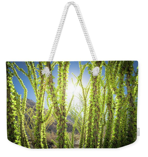 Bright Light In The Desert Weekender Tote Bag