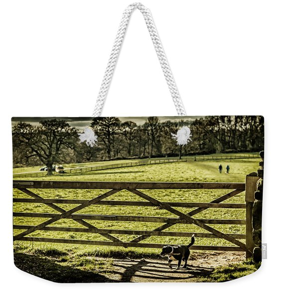 Weekender Tote Bag featuring the photograph Bringing It Back by Nick Bywater