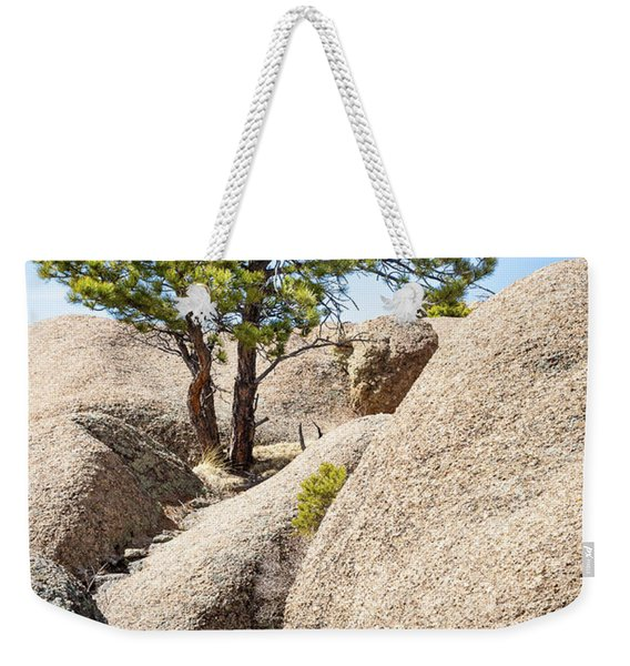 Weekender Tote Bag featuring the photograph Bristlecone In Granite 2 by Tim Newton