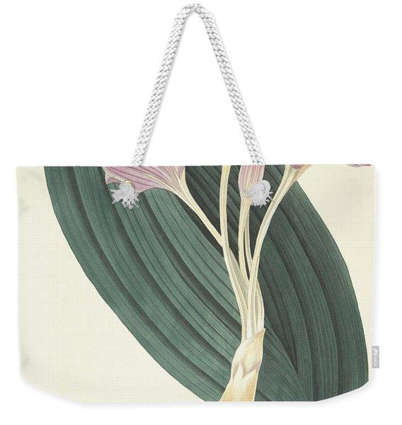 Broad-leaved Meadow Saffron Weekender Tote Bag