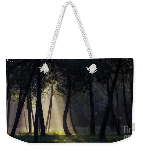 Broceliand's Light Weekender Tote Bag