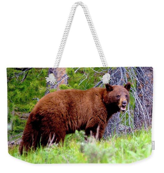 Brown Bear Weekender Tote Bag