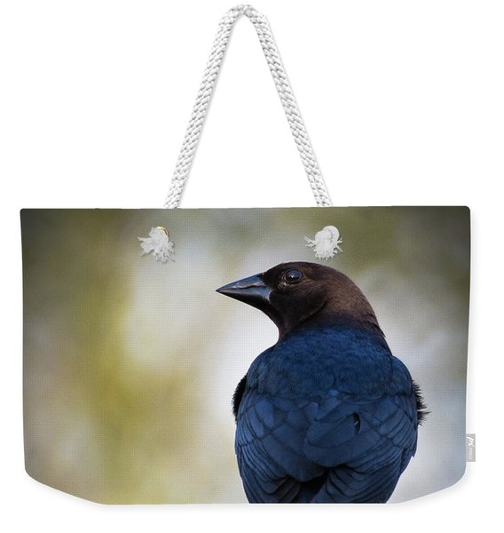 Brown-headed Cowbird Weekender Tote Bag