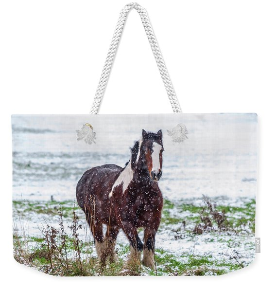 Weekender Tote Bag featuring the photograph Brown Horse Galloping Through The Snow by Scott Lyons