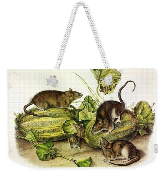 Brown, Or Norway, Rat Weekender Tote Bag