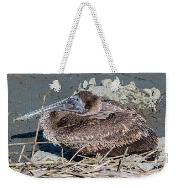 Brown Pelican 3 March 2018 Weekender Tote Bag