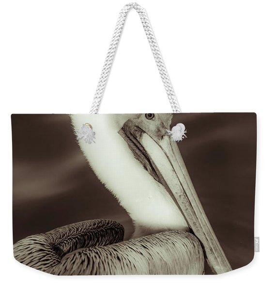 Brown Pelican Adult In Breeding Plumage, Close-up Of Head, Pelecanus Occidentalis, Usa Weekender Tote Bag