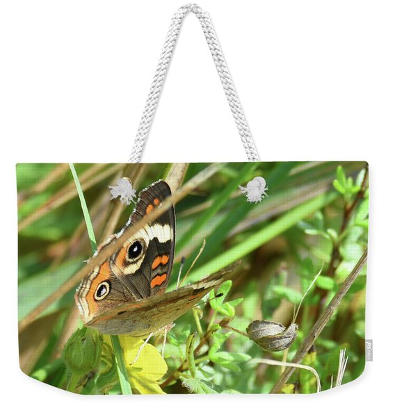 Weekender Tote Bag featuring the photograph Buckeye In The Leaves by Sally Sperry