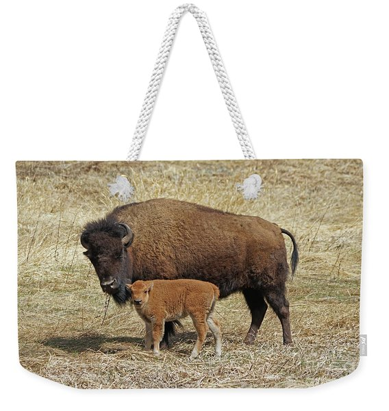 Buffalo With Newborn Calf Weekender Tote Bag