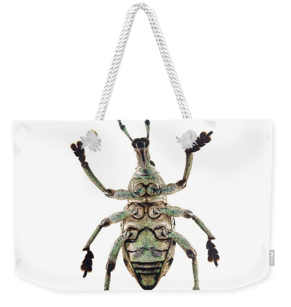 Weekender Tote Bag featuring the photograph Bug Series 006 by Clayton Bastiani