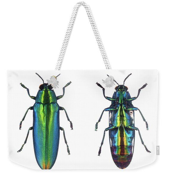 Weekender Tote Bag featuring the photograph Bug Series 027 by Clayton Bastiani
