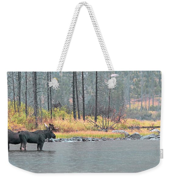 Bull And Cow Moose In East Rosebud Lake Montana Weekender Tote Bag