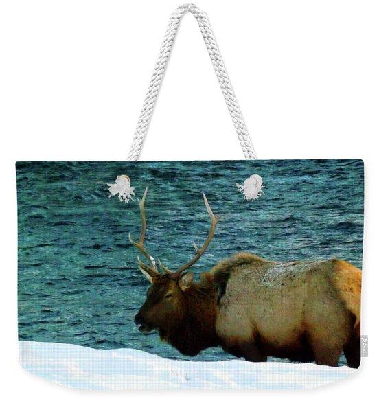 Bull Elk In Winter Weekender Tote Bag