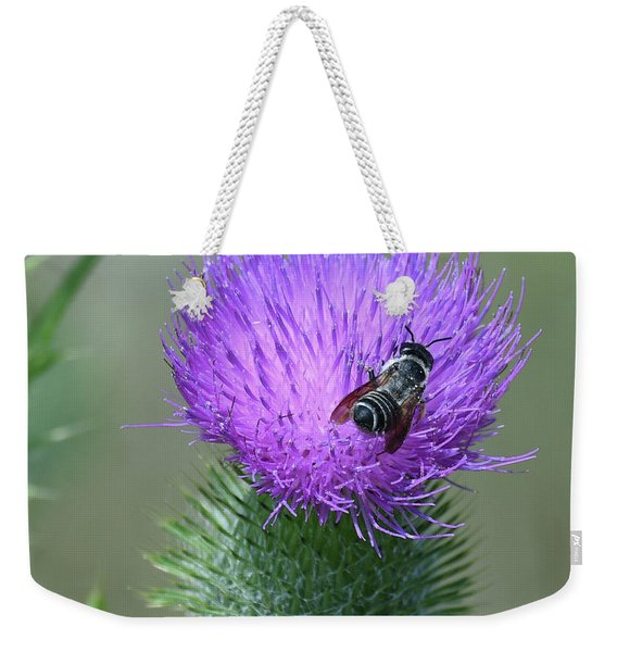 Bull Thistle And Leafcutter Bee Weekender Tote Bag
