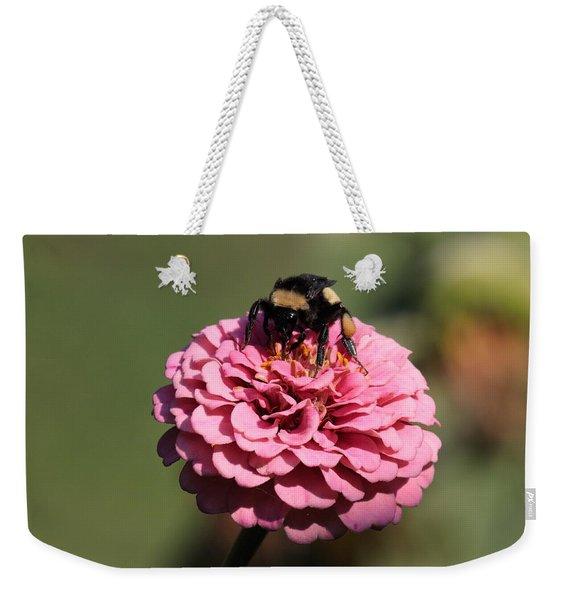 Bumble Bee On Zinnia 2649 Weekender Tote Bag