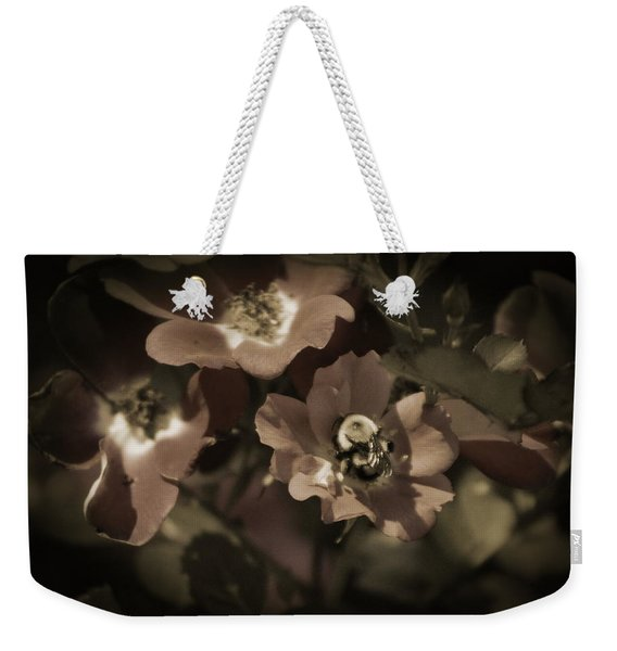 Bumblebee On Blush Country Rose In Sepia Tones Weekender Tote Bag