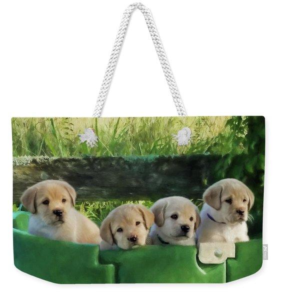 Bundles Of Joy - Labrador Art Weekender Tote Bag