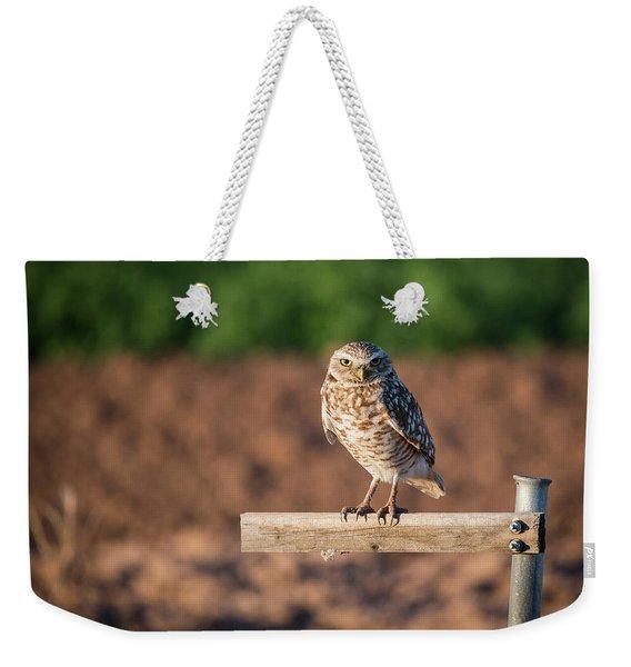 Burrowing Owl On A Perch Weekender Tote Bag