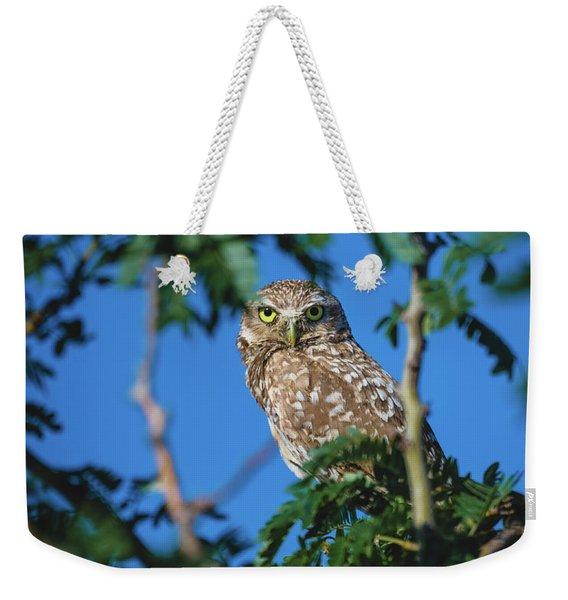 Burrowing Owl Sitting In A Tree Weekender Tote Bag