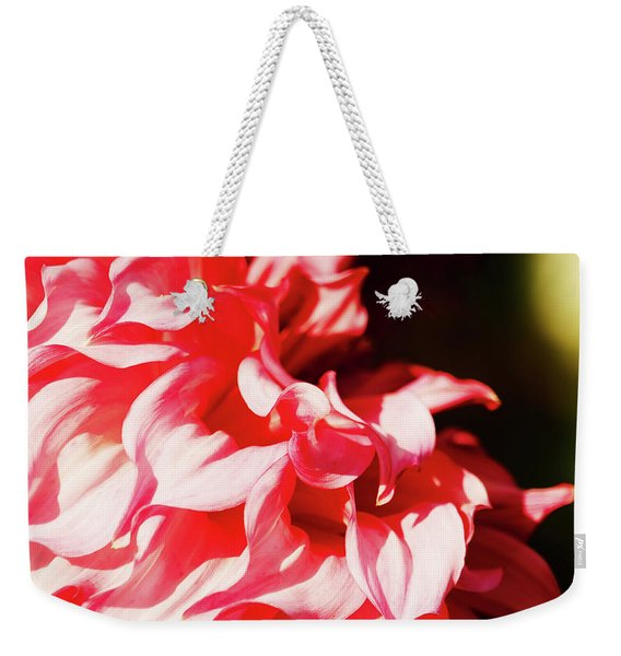 Weekender Tote Bag featuring the photograph Butchart Dahlia By Mike-hope by Michael Hope