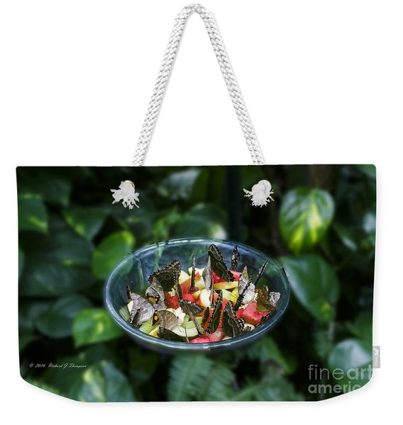 Weekender Tote Bag featuring the photograph Butterflies Feeding by Richard J Thompson