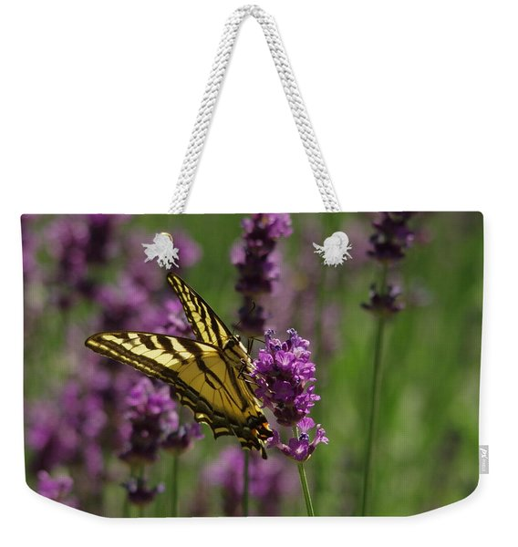 Butterfly In Lavender Weekender Tote Bag