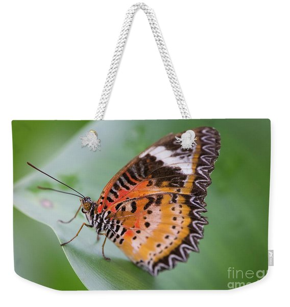 Weekender Tote Bag featuring the photograph Butterfly On The Edge Of Leaf by John Wadleigh