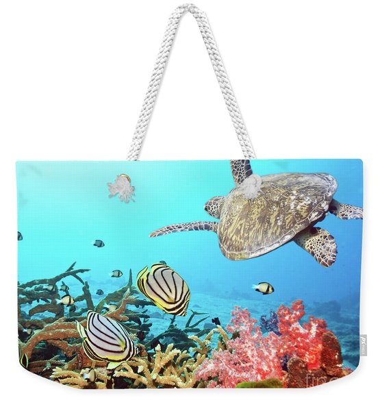 Butterflyfishes And Turtle Weekender Tote Bag
