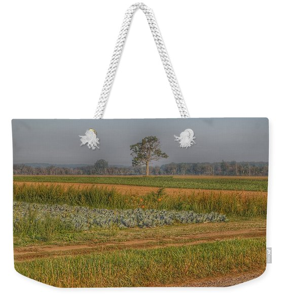 2009 - Cabbage And Pumpkin Patch Weekender Tote Bag