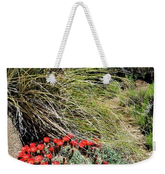 Crimson Barrel Cactus Weekender Tote Bag