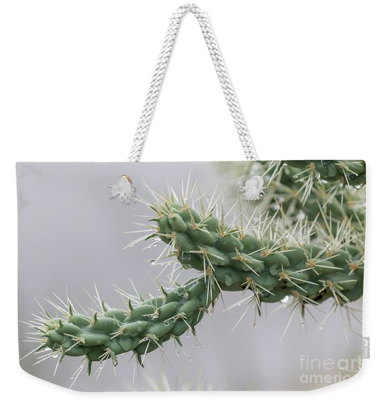 Cactus Branch With Wet White Long Needles Weekender Tote Bag