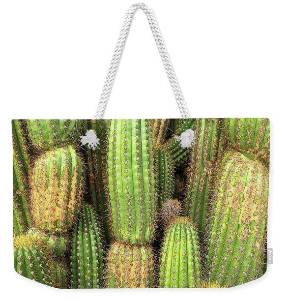 Cactus City Weekender Tote Bag