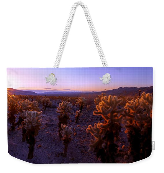 Prickly Weekender Tote Bag