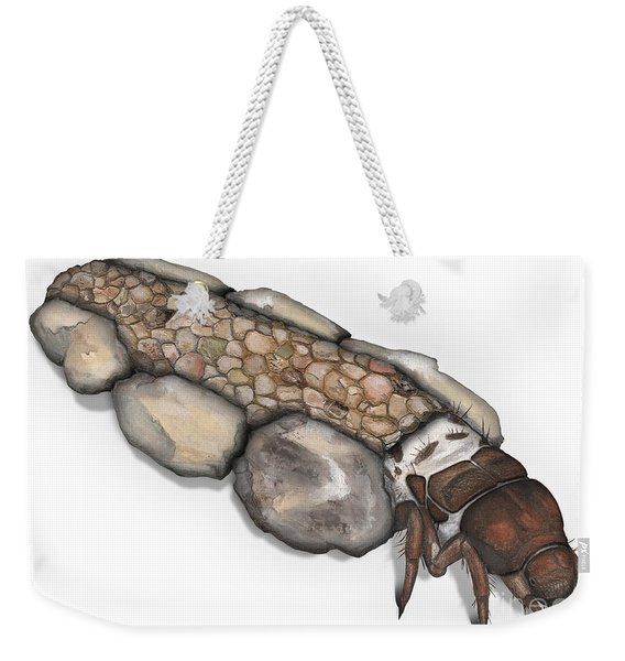Caddisfly Larva Nymph Goeridae_silo_pallipes -  Weekender Tote Bag