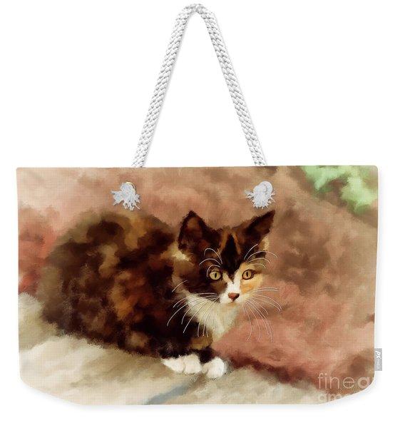 Calico Kitten Weekender Tote Bag