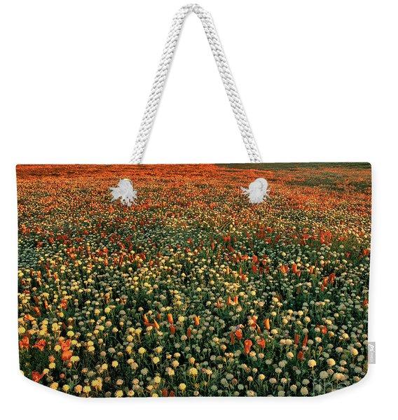 California Poppies At Dawn Lancaster California Weekender Tote Bag