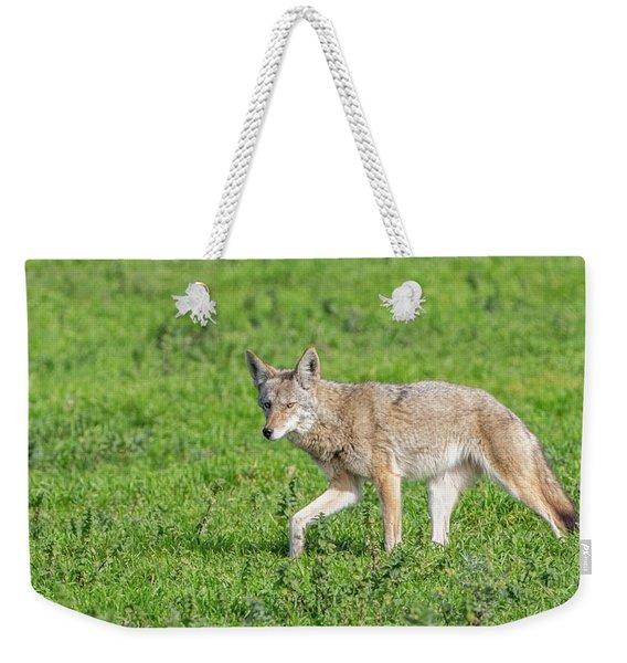 California Walk  Weekender Tote Bag